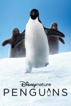 Penguins (2019) HDTV